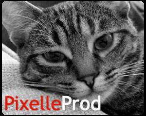 Logo PixelleProD